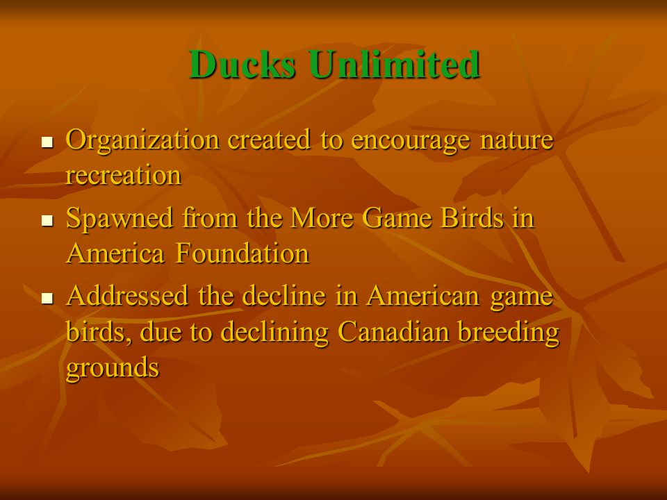 Ducks Unlimited Organization created to encourage nature recreation Organization created to encourage nature recreation Spawned from the More Game Birds in America Foundation Spawned from the More Game Birds in America Foundation Addressed the decline in American game birds, due to declining Canadian breeding grounds Addressed the decline in American game birds, due to declining Canadian breeding grounds