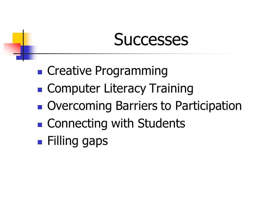 Successes Creative Programming Computer Literacy Training Overcoming Barriers to Participation Connecting with Students Filling gaps