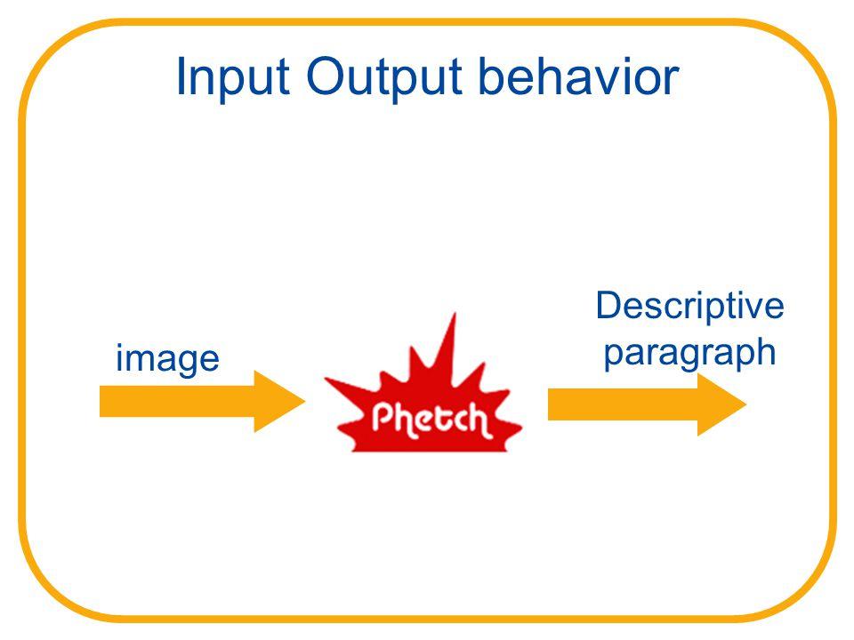 Input Output behavior image Descriptive paragraph