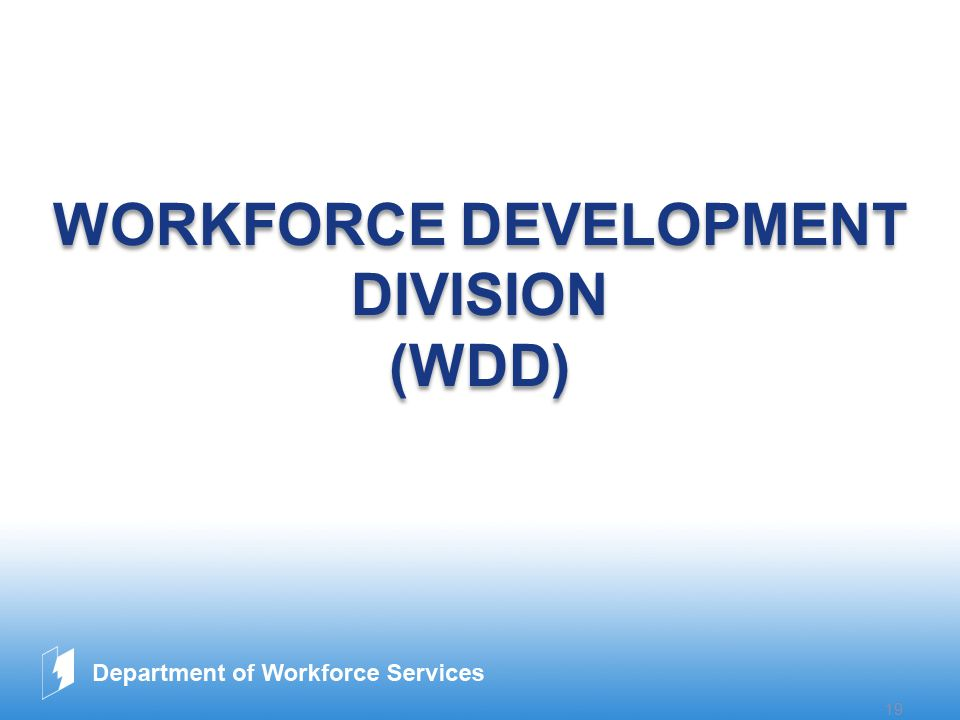 www.company.com 19 WORKFORCE DEVELOPMENT DIVISION (WDD) WORKFORCE DEVELOPMENT DIVISION (WDD)
