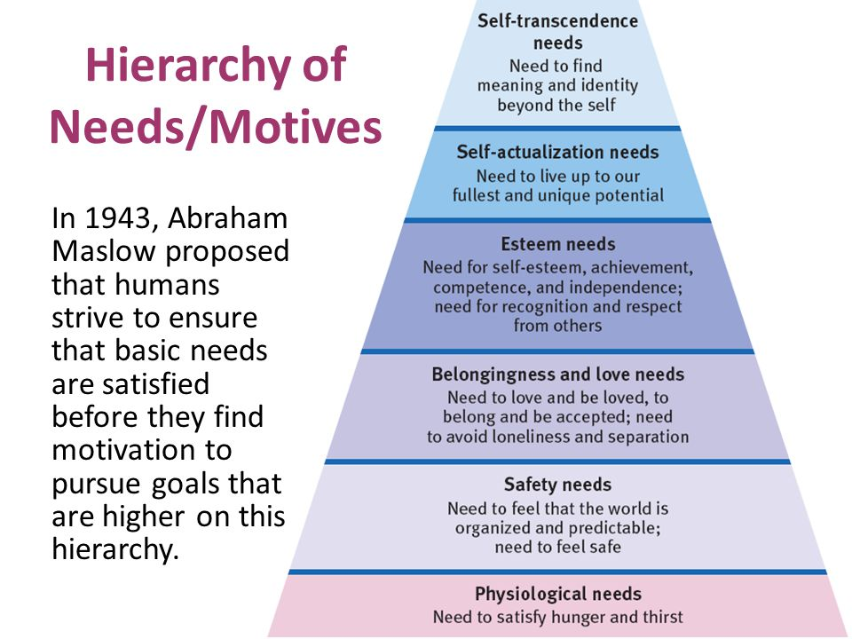 Hierarchy of Needs/Motives In 1943, Abraham Maslow proposed that humans strive to ensure that basic needs are satisfied before they find motivation to