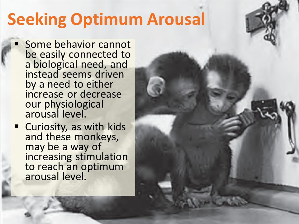 Seeking Optimum Arousal  Some behavior cannot be easily connected to a biological need, and instead seems driven by a need to either increase or decr