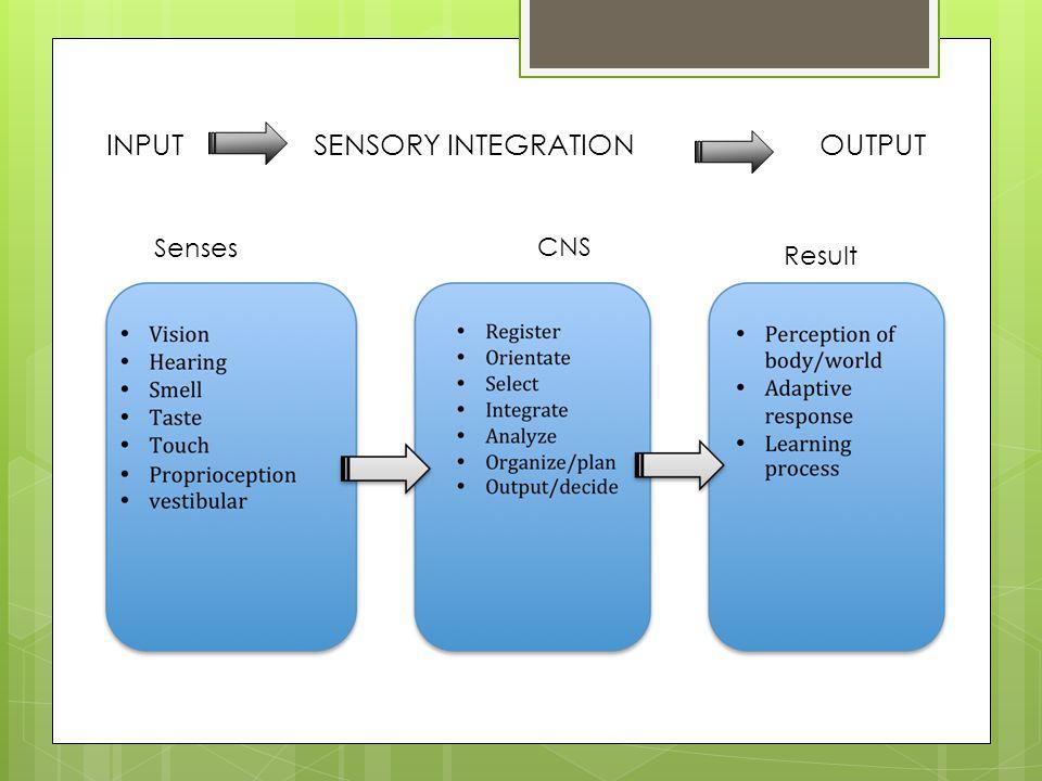 INPUT SENSORY INTEGRATION OUTPUT Senses CNS Result