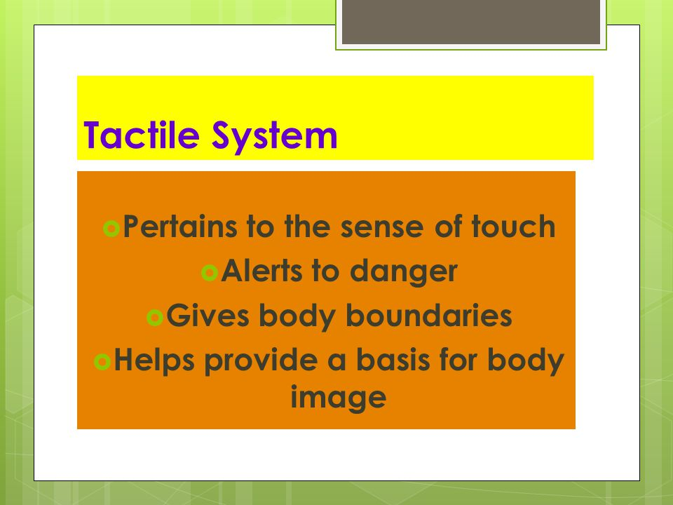 Protective System  Activates Fight, Fright, or Flight  Born with this system- Primal  Stimulated by light touch, pain, temperature  Processed through the emotional, excitatory portion of the limbic system  NOT a cognitive response