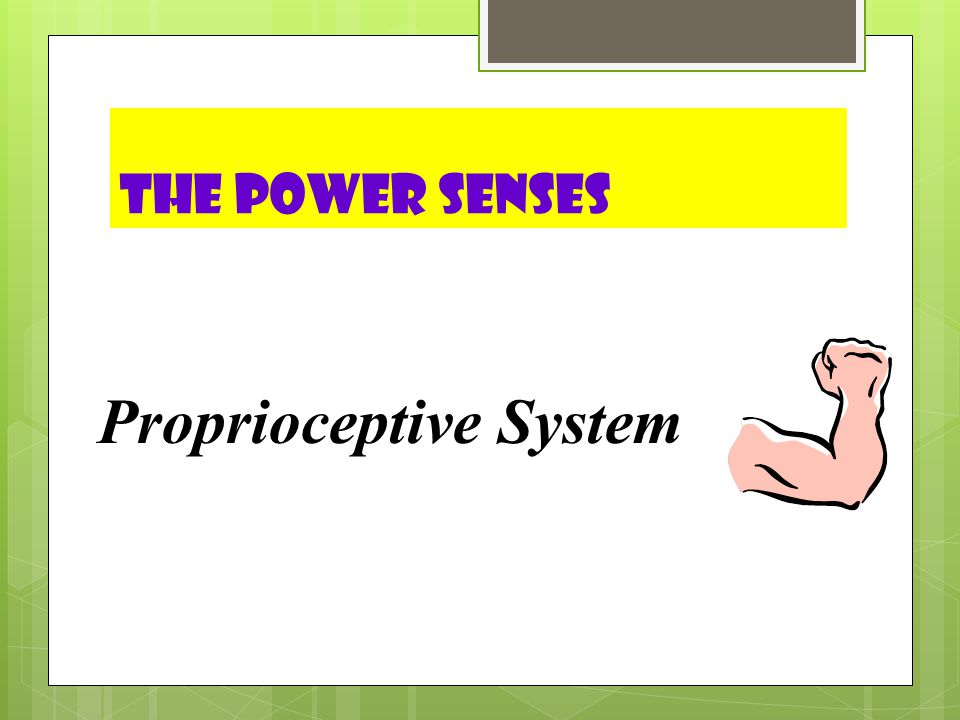 The Power Senses Proprioceptive System