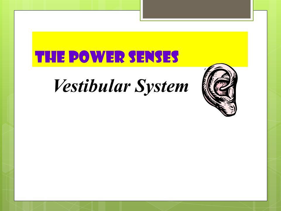 The Power Senses Vestibular System