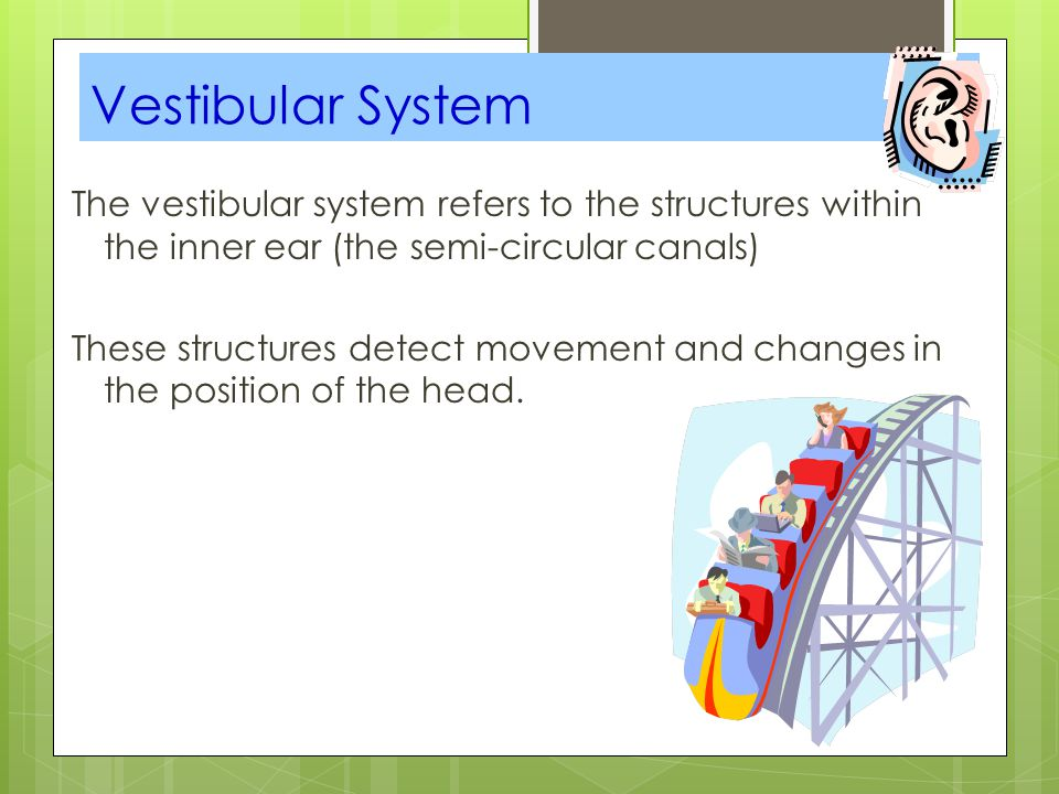 The vestibular system refers to the structures within the inner ear (the semi-circular canals) These structures detect movement and changes in the pos