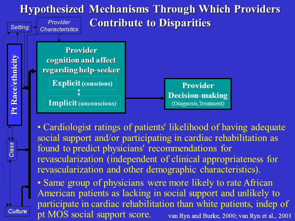 Provider Decision-making (Diagnosis,Treatment) Provider cognition and affect regarding help-seeker Provider Characteristics Setting Pt Race/ethnicity