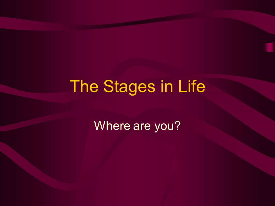 The Stages in Life Where are you