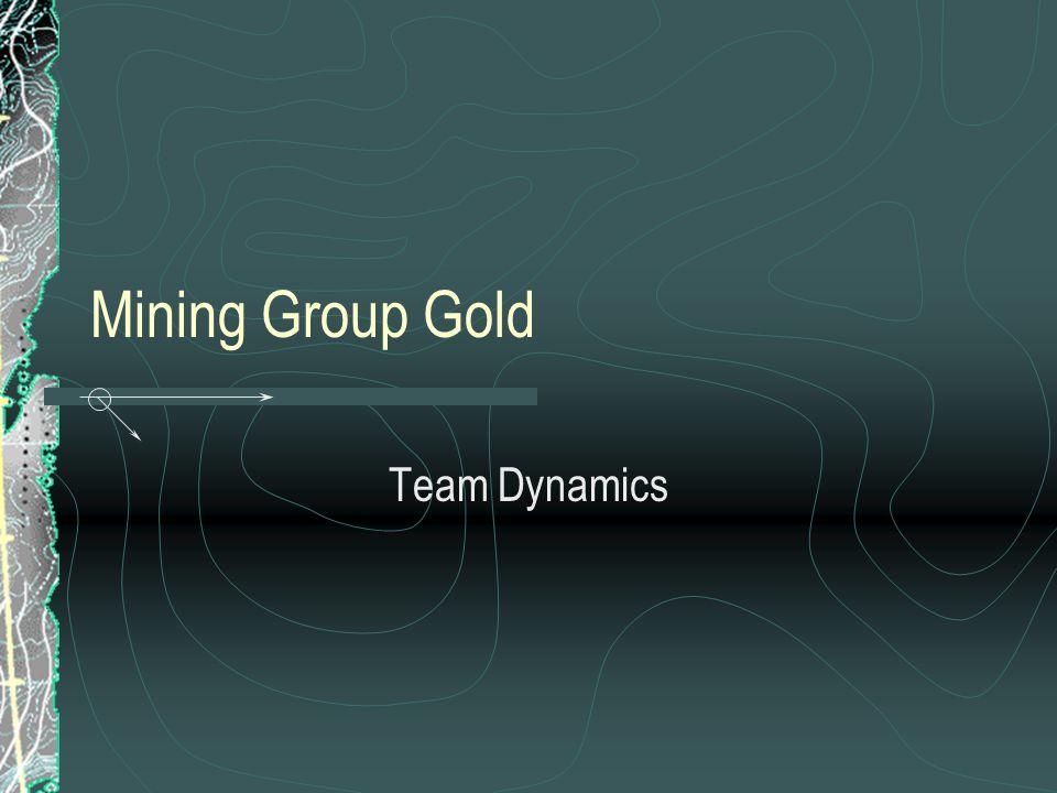 Mining Group Gold Team Dynamics