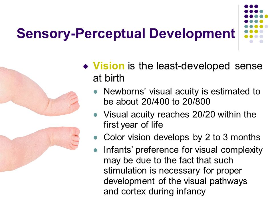 Sensory-Perceptual Development Vision is the least-developed sense at birth Newborns' visual acuity is estimated to be about 20/400 to 20/800 Visual acuity reaches 20/20 within the first year of life Color vision develops by 2 to 3 months Infants' preference for visual complexity may be due to the fact that such stimulation is necessary for proper development of the visual pathways and cortex during infancy