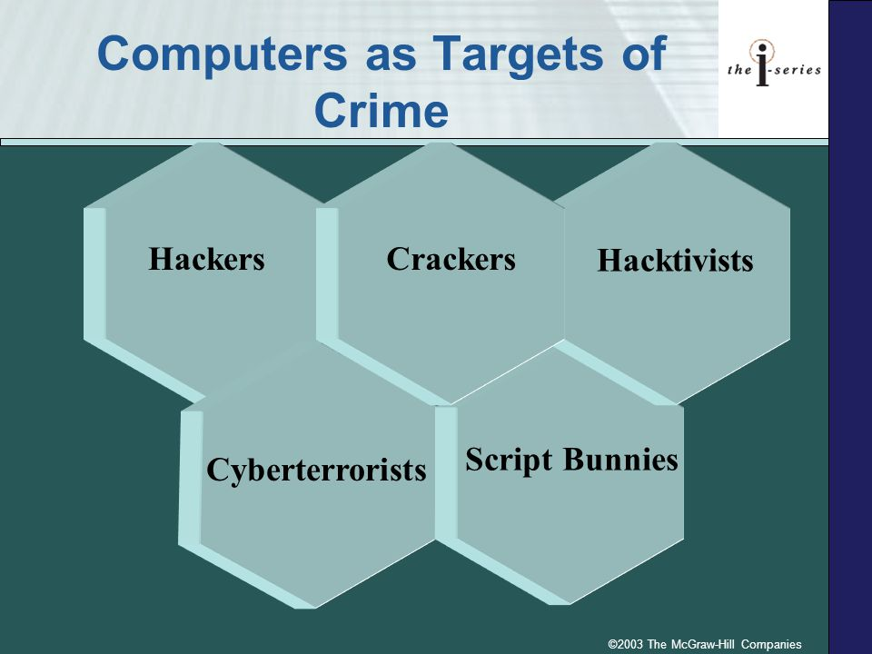 ©2003 The McGraw-Hill Companies Hackers Computers as Targets of Crime Cyberterrorists Script Bunnies Hacktivists Crackers