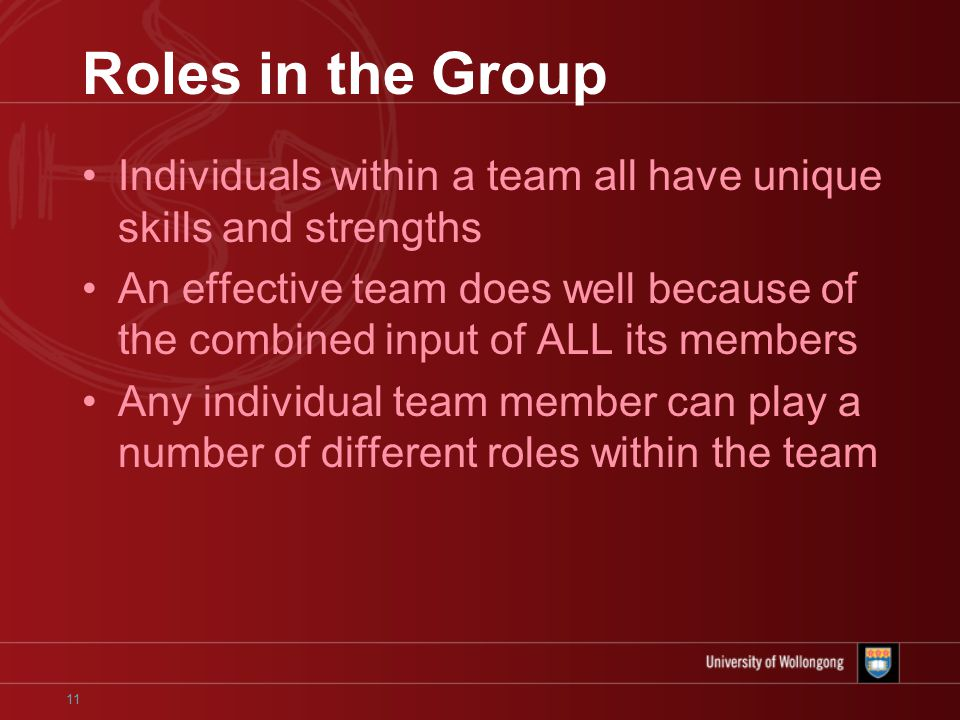 11 Roles in the Group Individuals within a team all have unique skills and strengths An effective team does well because of the combined input of ALL its members Any individual team member can play a number of different roles within the team