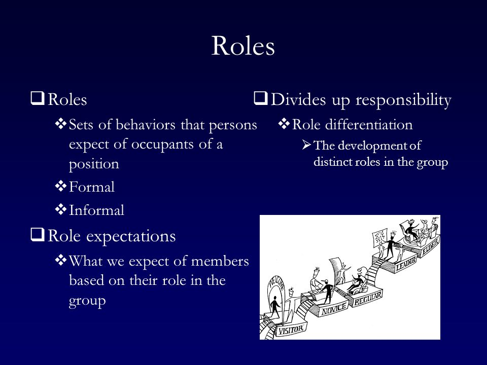 Roles  Roles  Sets of behaviors that persons expect of occupants of a position  Formal  Informal  Role expectations  What we expect of members based on their role in the group  Divides up responsibility  Role differentiation  The development of distinct roles in the group
