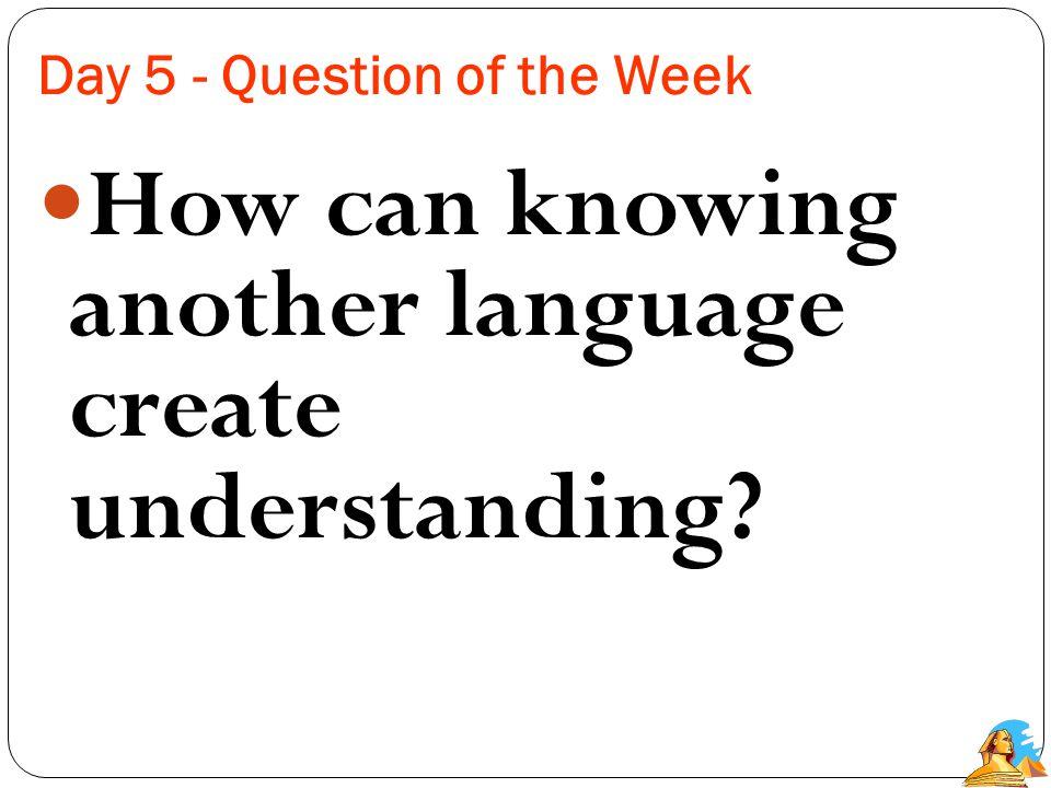 Essay Questions 1.