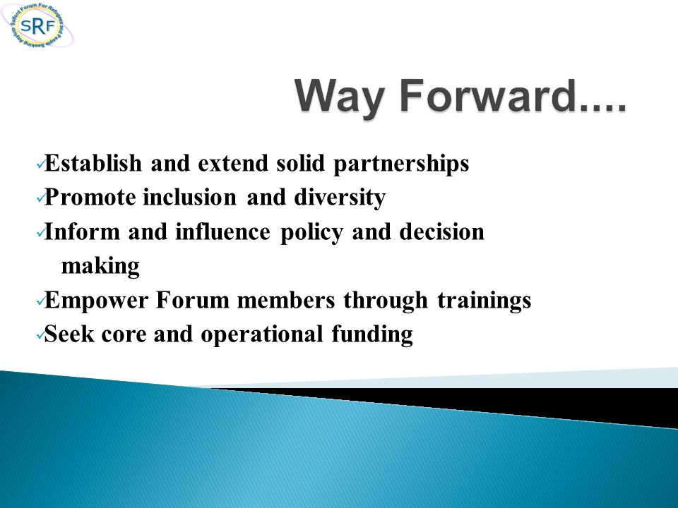 Establish and extend solid partnerships Promote inclusion and diversity Inform and influence policy and decision making Empower Forum members through trainings Seek core and operational funding
