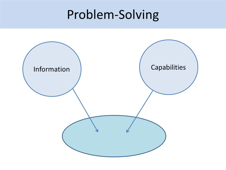 Problem-Solving Information Capabilities