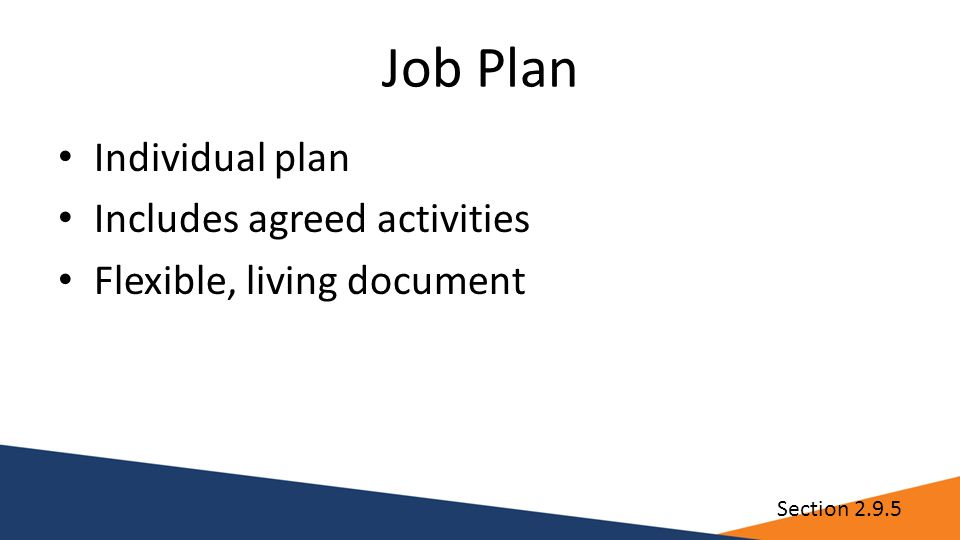 Job Plan Individual plan Includes agreed activities Flexible, living document Section 2.9.5