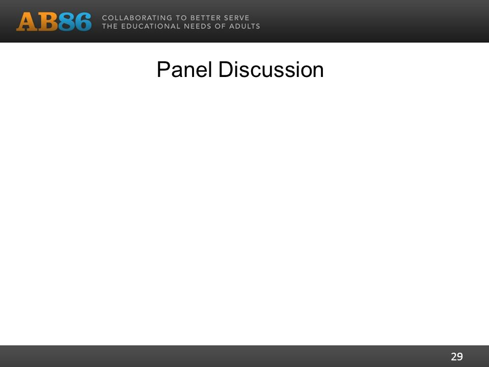 Panel Discussion 29