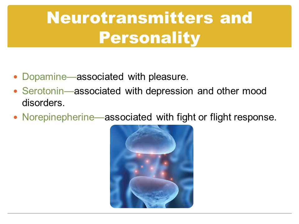 Neurotransmitters and Personality Dopamine—associated with pleasure.