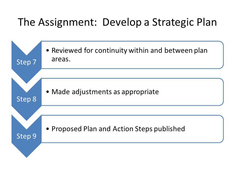 The Assignment: Develop a Strategic Plan Step 7 Reviewed for continuity within and between plan areas. Step 8 Made adjustments as appropriate Step 9 P