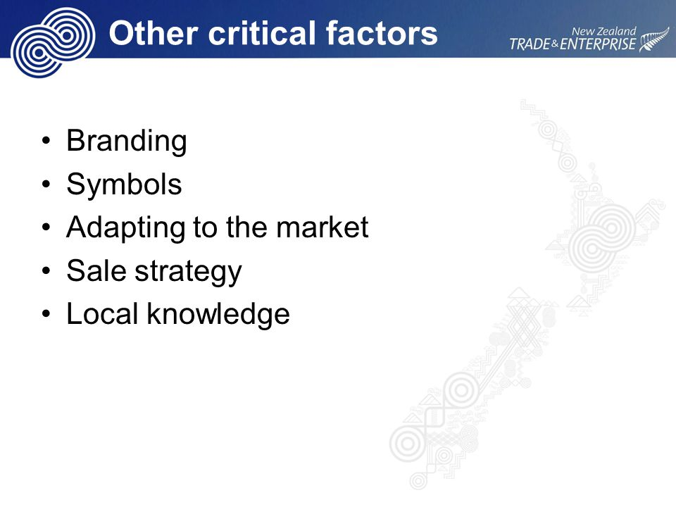 Other critical factors Branding Symbols Adapting to the market Sale strategy Local knowledge