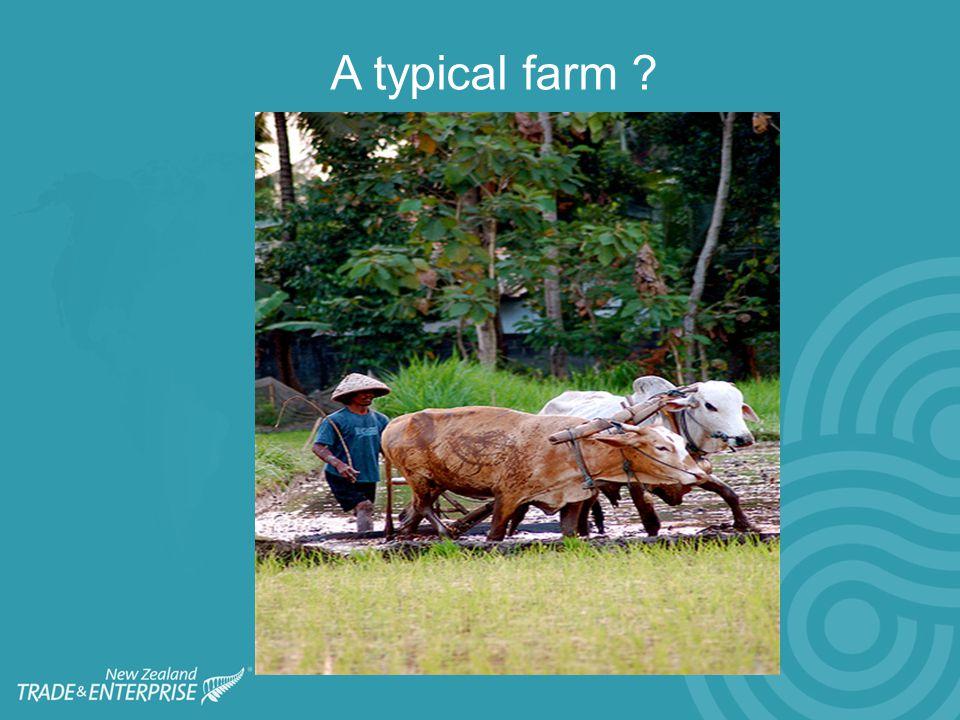 A typical farm