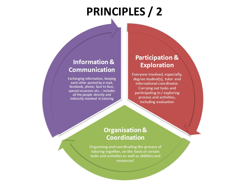 PRINCIPLES / 2 Participation & Exploration Everyone involved, especially, degree student(s), tutor and international coordinator. Carrying out tasks a