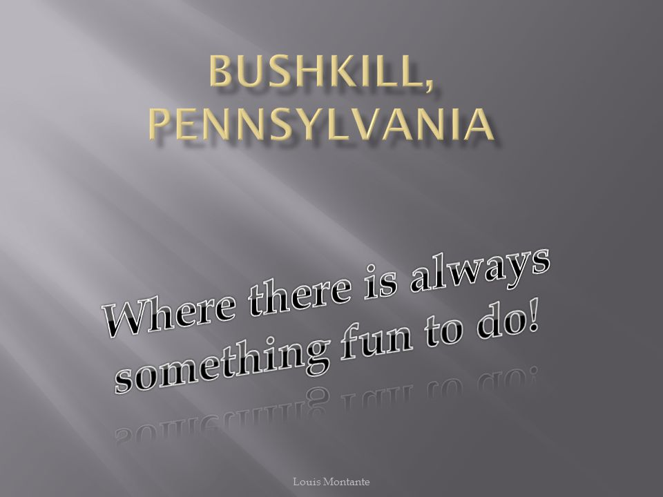  In Bushkill there are 11 townships:  Milford  Delaware  Dingmans  Blooming Grove  Porter  Westfall  And many more….