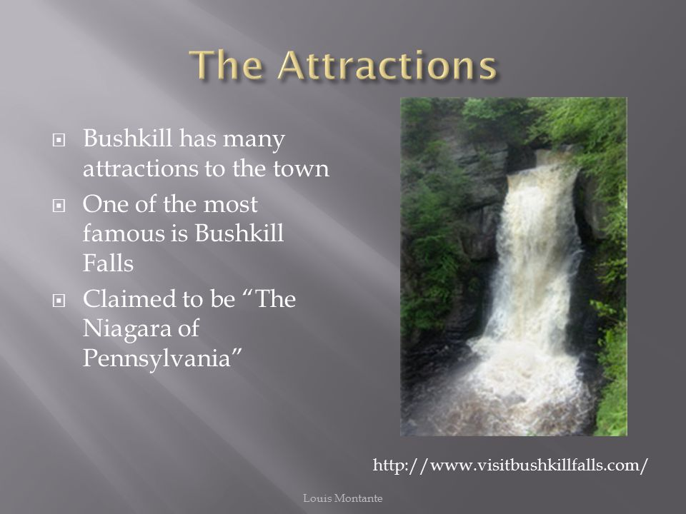  Bushkill has many attractions to the town  One of the most famous is Bushkill Falls  Claimed to be The Niagara of Pennsylvania http://www.visitbushkillfalls.com/ Louis Montante