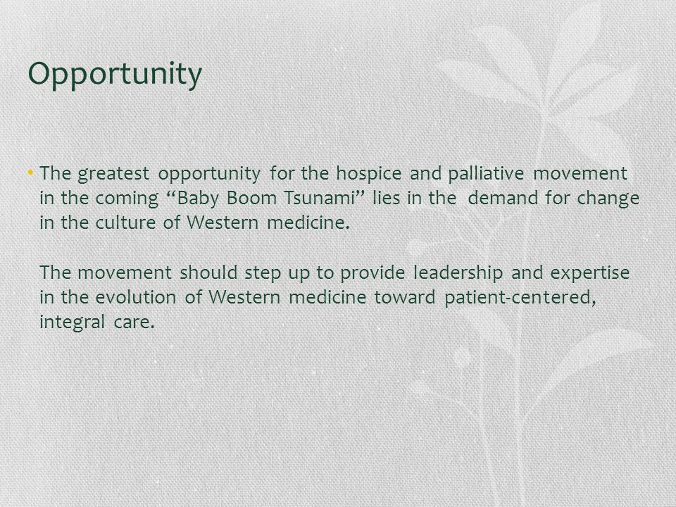 Opportunity The greatest opportunity for the hospice and palliative movement in the coming Baby Boom Tsunami lies in the demand for change in the culture of Western medicine.