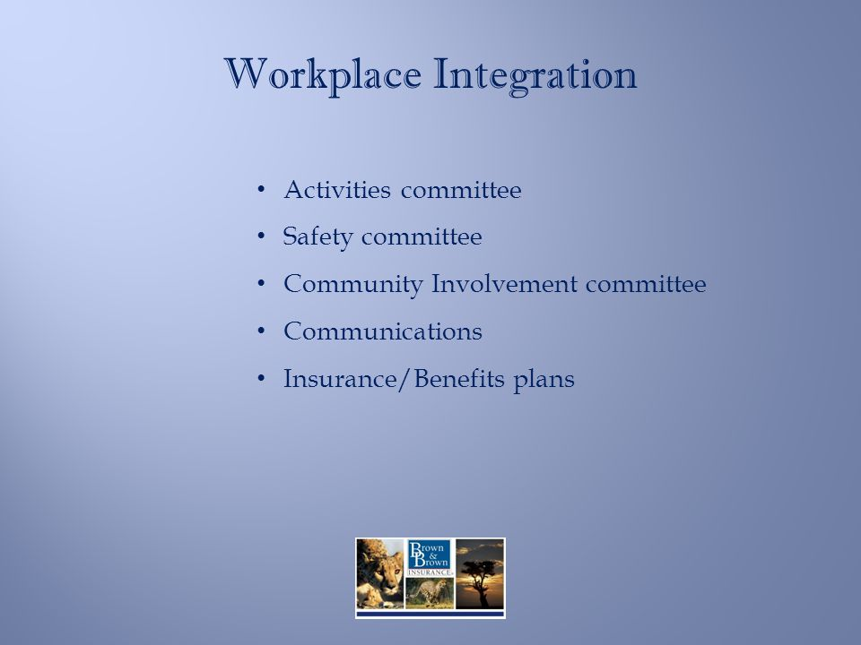 Workplace Integration Activities committee Safety committee Community Involvement committee Communications Insurance/Benefits plans