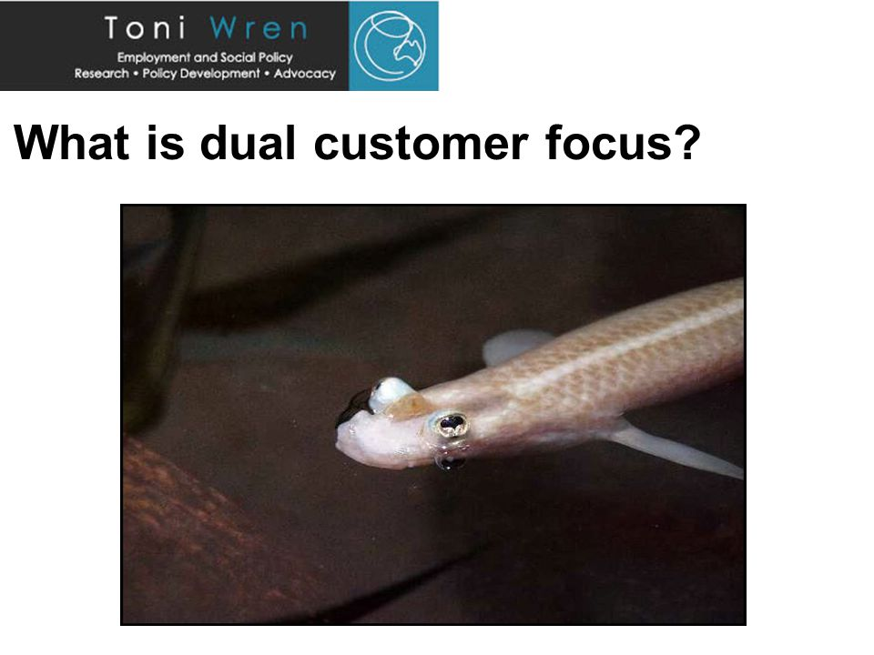 What is dual customer focus