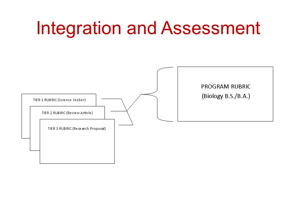 Integration and Assessment