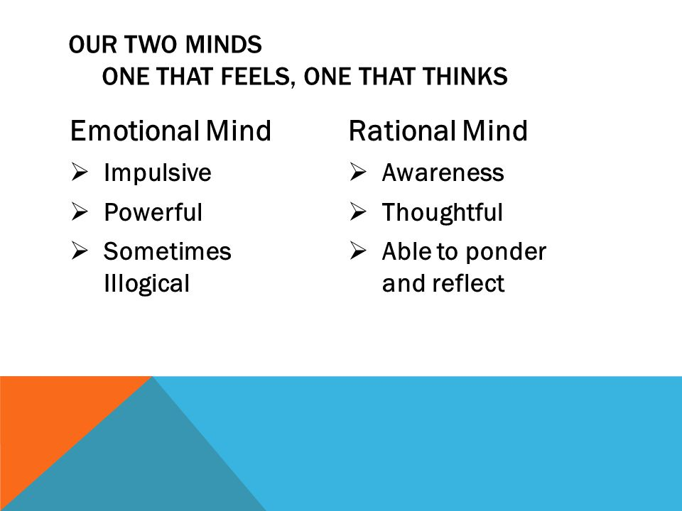 Emotional Mind  Impulsive  Powerful  Sometimes Illogical Rational Mind  Awareness  Thoughtful  Able to ponder and reflect OUR TWO MINDS ONE THAT FEELS, ONE THAT THINKS