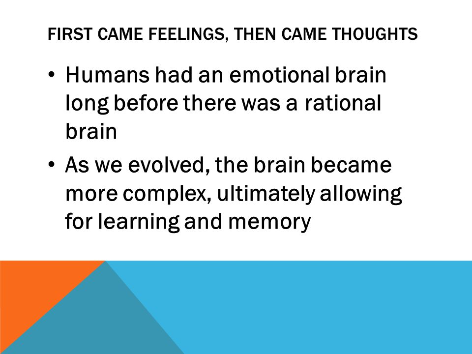 FIRST CAME FEELINGS, THEN CAME THOUGHTS Humans had an emotional brain long before there was a rational brain As we evolved, the brain became more complex, ultimately allowing for learning and memory