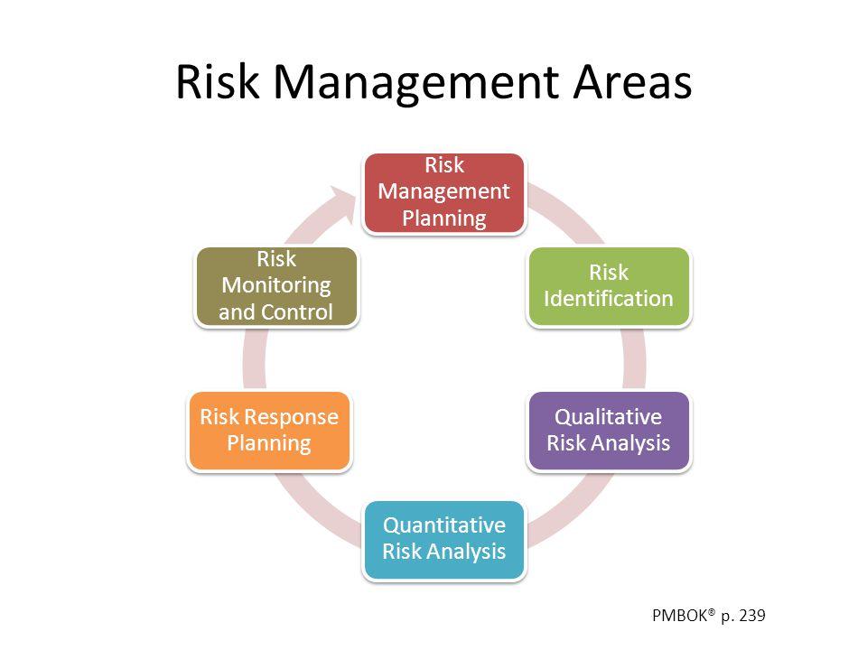 Risk Management Areas Risk Management Planning Risk Identification Qualitative Risk Analysis Quantitative Risk Analysis Risk Response Planning Risk Mo