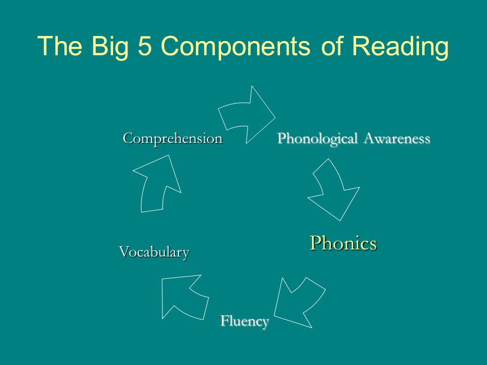 Synthetic Phonics Teaching Blending For dog 1.Write d, Point: Sound 2.Students: /d/ 3.Write o, Point: sound 4.Students: /o/ 5.Slide under do, Blend Blend through the vowel 6.Students: /do/ 7.Write g, Point: Sound 8.Students: /g/ 9.Slide under dog, Blend 10.Students: /dog/ 11.What's the word.