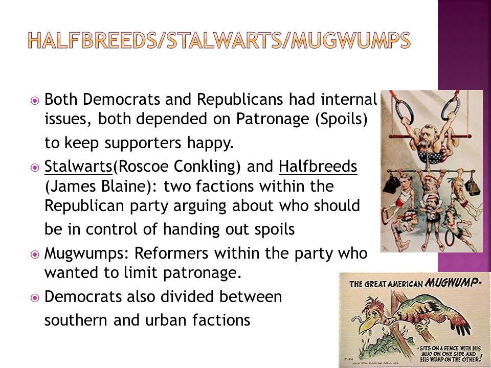  Both Democrats and Republicans had internal issues, both depended on Patronage (Spoils) to keep supporters happy.  Stalwarts(Roscoe Conkling) and H