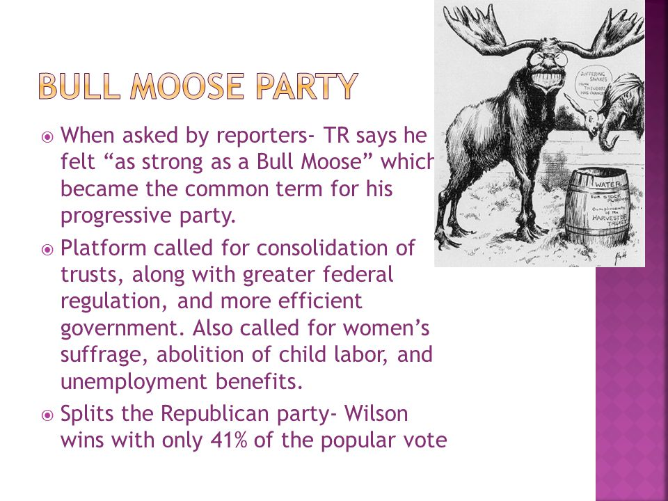 " When asked by reporters- TR says he felt ""as strong as a Bull Moose"" which became the common term for his progressive party.  Platform called for c"