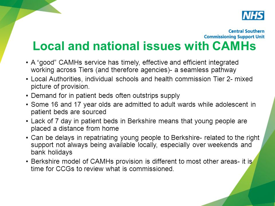 Local and national issues with CAMHs A good CAMHs service has timely, effective and efficient integrated working across Tiers (and therefore agencies)- a seamless pathway Local Authorities, individual schools and health commission Tier 2- mixed picture of provision.