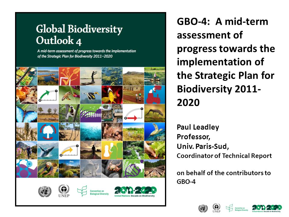 GBO-4: A mid-term assessment of progress towards the implementation of the Strategic Plan for Biodiversity 2011- 2020 Paul Leadley Professor, Univ.