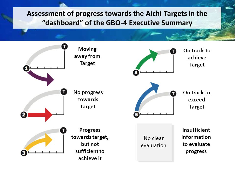 Assessment of progress towards the Aichi Targets in the dashboard of the GBO-4 Executive Summary Moving away from Target No progress towards target Progress towards target, but not sufficient to achieve it On track to achieve Target On track to exceed Target Insufficient information to evaluate progress No clear evaluation