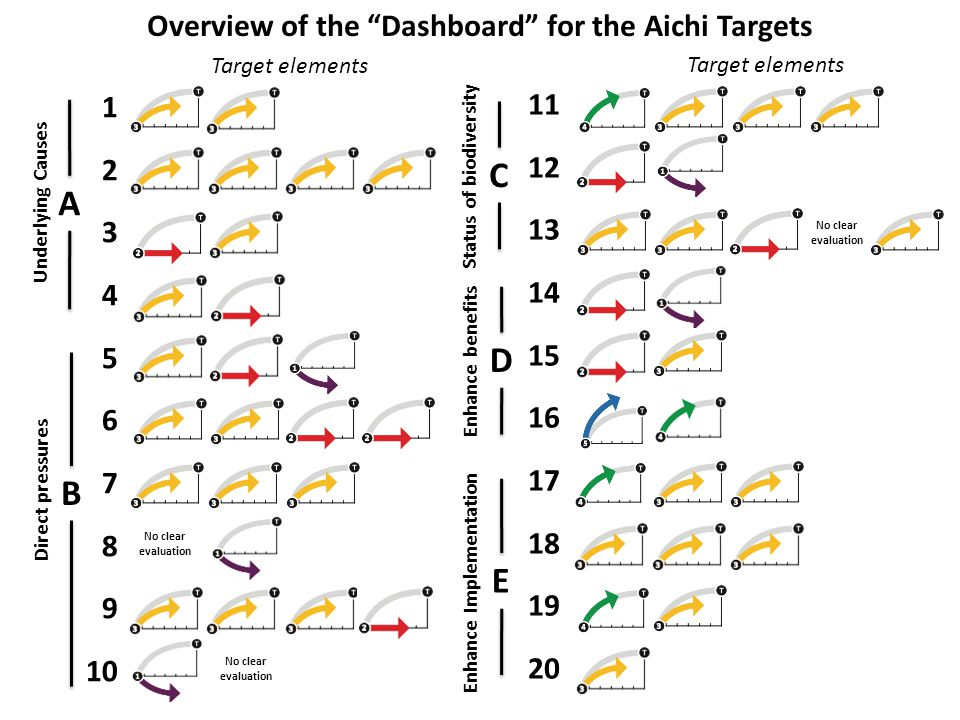 No clear evaluation 1 2 3 4 5 6 7 8 9 10 No clear evaluation 11 12 13 14 15 16 17 18 19 20 No clear evaluation Overview of the Dashboard for the Aichi Targets A B C D E Underlying Causes Target elements Direct pressures Status of biodiversity Enhance benefits Enhance Implementation