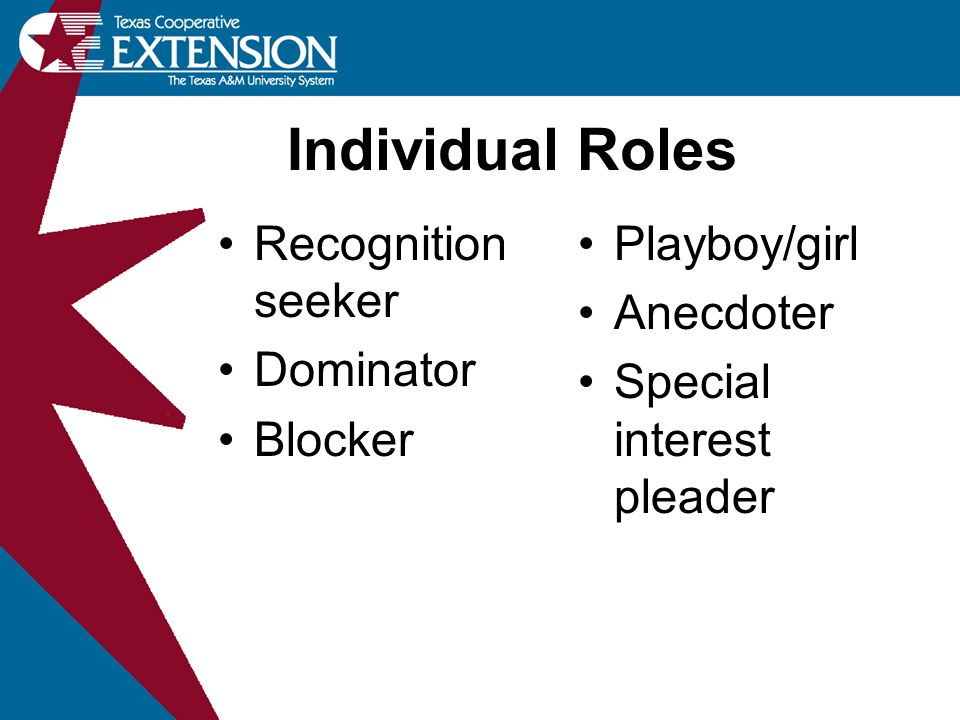 Recognition seeker Dominator Blocker Playboy/girl Anecdoter Special interest pleader Individual Roles