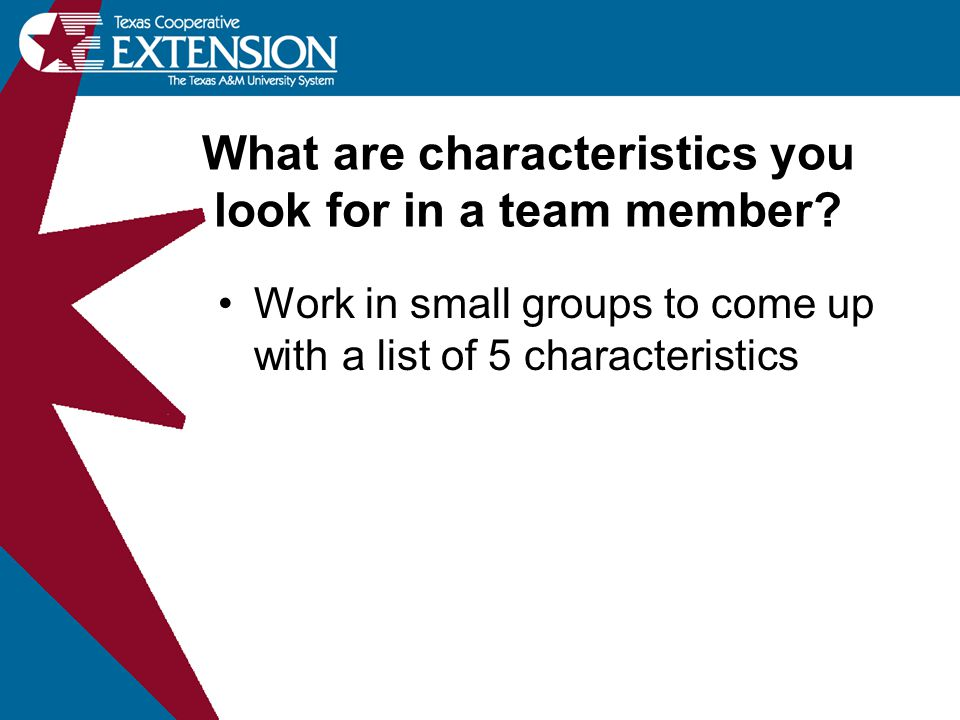 What are characteristics you look for in a team member.