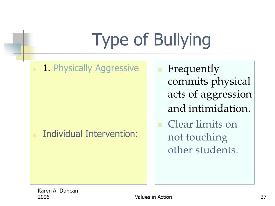Karen A.Duncan 2006Values in Action37 Type of Bullying 1.