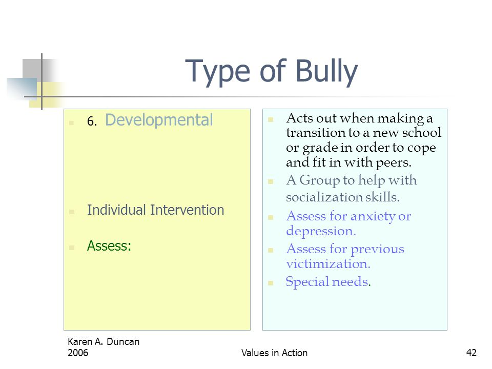 Karen A.Duncan 2006Values in Action42 Type of Bully 6.