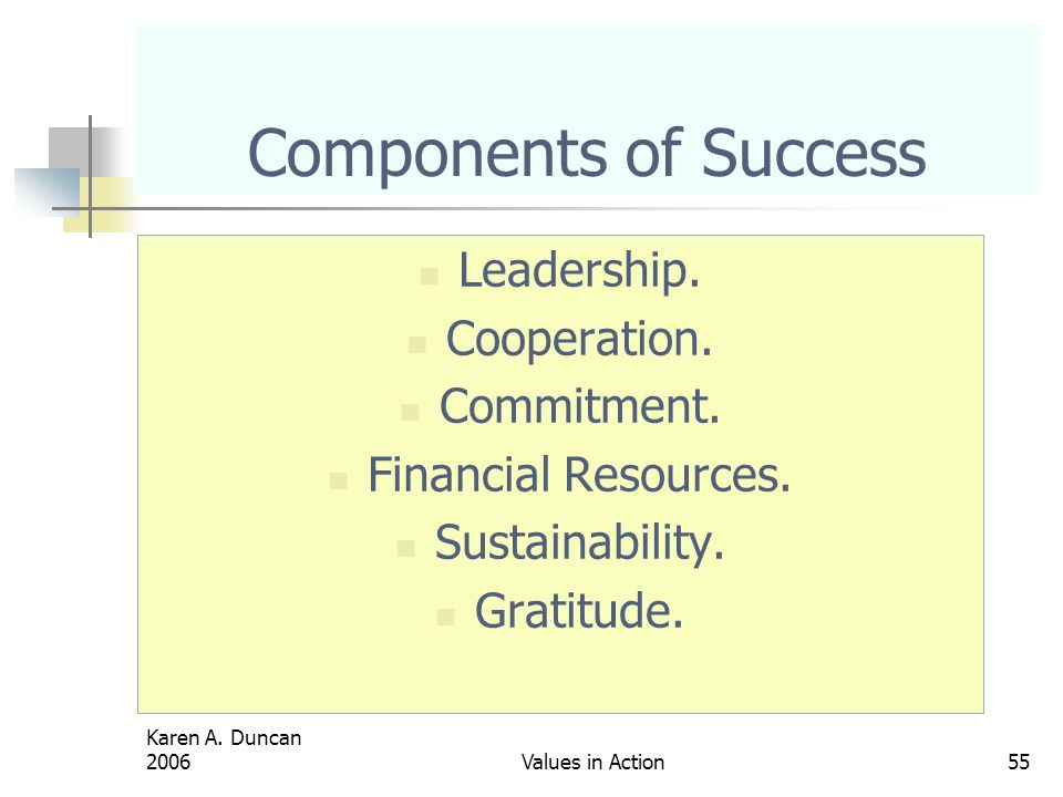 Karen A.Duncan 2006Values in Action55 Components of Success Leadership.