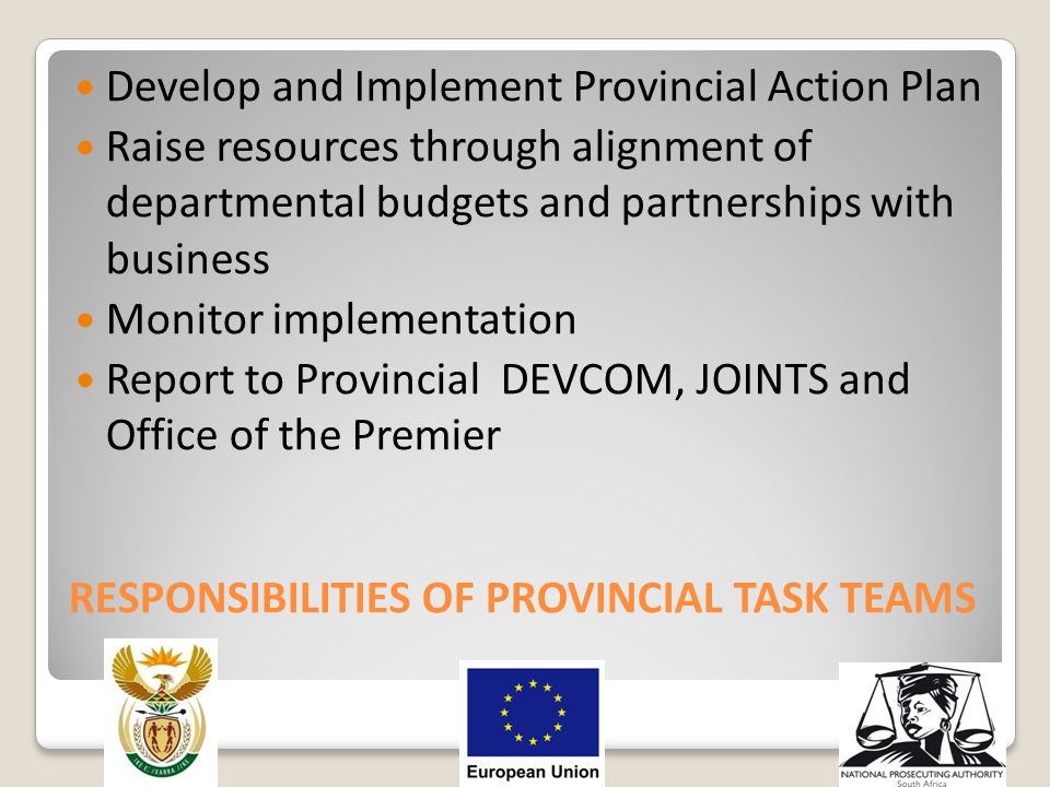 RESPONSIBILITIES OF PROVINCIAL TASK TEAMS Develop and Implement Provincial Action Plan Raise resources through alignment of departmental budgets and p